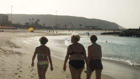 Drei Frauen, die entlang den Strand gehen stock footage