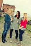 Drei Frauen-Plaudern im Freien stockbild