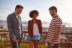 Drei Freunde, die auf einer Brücke plaudern stockfotos