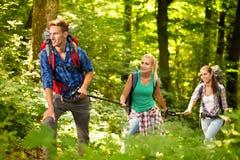 Drei Freunde, die durch den Wald wandern lizenzfreie stockfotos