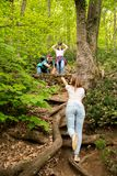 Drei Freunde, die im Wald sich hilft wandern lizenzfreies stockbild