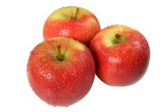 Drei frisch gewaschene Äpfel. lizenzfreie stockfotografie