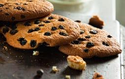 Drei frische gebackene Plätzchen mit Rosine und Schokolade auf der Wanne Lizenzfreie Stockfotos