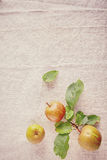 Drei frische süße Äpfel auf Eckweinlese-Stoff Stockbild