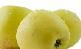 Drei gelbe Äpfel. Stockbild