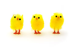 Drei gelbe Ostern-Küken in einer Reihe Stockfotos
