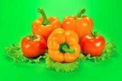 Drei Gemüsepaprika und zwei Tomaten mit einem Kopfsalat treiben auf einem grünen Hintergrund Blätter Stockbilder