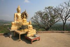Drei Goldbuddha-Statuen ordneten nahe der Klippe an Lizenzfreie Stockbilder