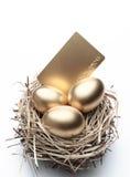 Drei goldene Eier im Nest Stockbilder