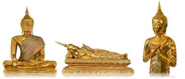 Drei goldener Buddha stockbild