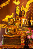 Drei goldenes Buddhas Lizenzfreie Stockfotos