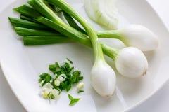 Drei große mexikanische Zwiebeln, die Frühlingszwiebeln sind, die auf einer weißen Platte mit etwas kleinerem Grün O größer sind  stockbild