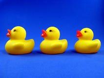 Drei Gummi Duckies Lizenzfreies Stockfoto