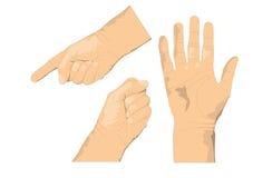 Drei Hände stockfotos