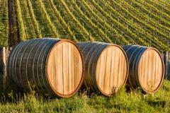 Drei hölzerne Fässer im Weinberg Lizenzfreie Stockfotos