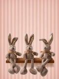 Drei Hasen Stockbild
