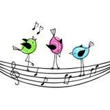 Drei hell farbige Vögel auf der Daube mit Violinschlüssel und n vektor abbildung