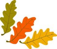 Drei Herbstblätter Lizenzfreie Stockfotografie