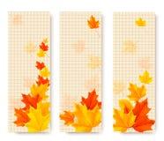 Drei Herbstfahnen mit Farbblättern Stockbilder