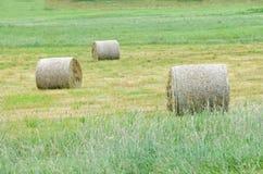 Drei Heurollen auf einem Feld stockfotografie