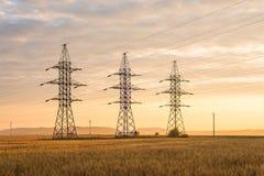 Drei Hochspannungspfosten auf einem Weizenfeld in den Strahlen des aufgehende Sonne stockfoto