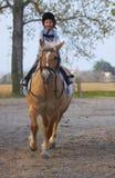 Drei Jahre alte Kindfahrt zum Pony Stockfotos
