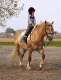 Drei Jahre alte Kindfahrt zum Pony Lizenzfreies Stockbild