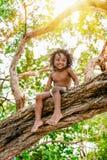 Drei Jahre altes Kind, die draußen auf einem Baumbrunch im Dschungelwald hat Spaß sitzen Stockbilder