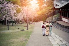 Drei japanische Mädchen, die den Kimono geht in Kirschblüte-Garten tragen Stockfoto
