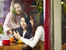 Drei junge asiatische Frauen, die Handy in der Kaffeestube betrachten Lizenzfreie Stockfotos