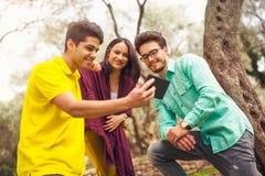 Drei junge Leute, die am Handy unter dem Olivenbaum schauen Lizenzfreie Stockbilder