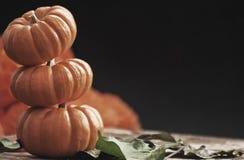 Drei Kürbise für Halloween Lizenzfreie Stockfotos