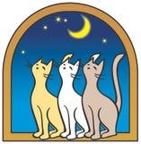 Drei Katzen durch das Fenster, Mond Stockfoto