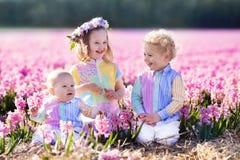 Drei Kinder, die auf dem schönen Hyazinthenblumengebiet spielen Lizenzfreie Stockbilder