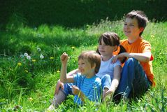 Drei Kinder in einer Wiese Lizenzfreies Stockbild