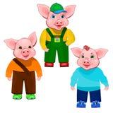 Drei kleine Schweine Stockfoto