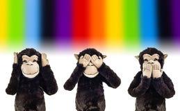 DREI KLUGE FALLHAMMER Lizenzfreie Stockfotos