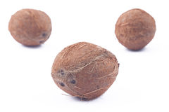 Drei Kokosnüsse auf weißem Hintergrund Stockfotos