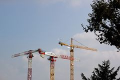 Drei Kräne Stockfoto