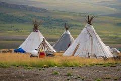Drei Kumpel Sommerlager von nomadischen Renhirten in den polaren Urals lizenzfreies stockfoto