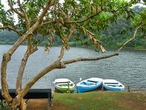 Drei leere Boote in der Front am Periyar See, Kerala, Indien lizenzfreie stockbilder
