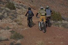 Drei Leute-Reitgebirgsfahrräder Stockfotos