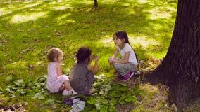 Drei Mädchen, die im Park auf dem Gras nahe dem Baum sitzen stock footage