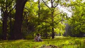 Drei Mädchen, die im Park auf dem Gras unter den Bäumen spielen stock video