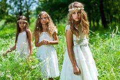 Drei Mädchen, die Weißkleider im Holz tragen. Stockfotografie