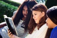 Drei Mädchen, welche zusammen die Bibel studieren Stockfoto