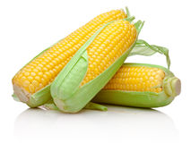 Drei Maiskolben lokalisiert auf weißem Hintergrund Stockfotografie