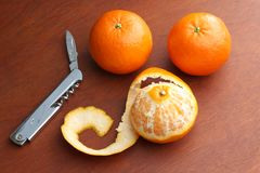 Drei Mandarinen Lizenzfreie Stockfotos