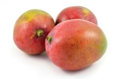Drei Mangofrüchte Stockfoto