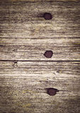 Drei Nägel hämmerten in ein hölzernes Brett lizenzfreie stockbilder